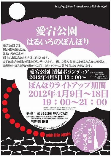 はるいろ愛宕公園ぼんぼり桜ライトアップ a3 2012.jpg
